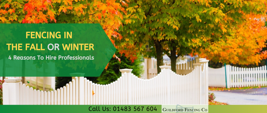 Opt For Fencing In Autumn Or Winter And Reap Many Benefits
